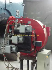 纸箱厂10吨甲醇蒸汽锅炉